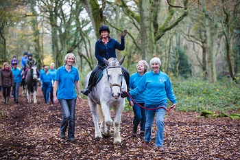South Downs RDA Launch Website